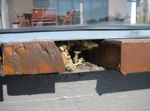 Beware of dodgy decking timber