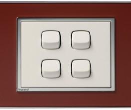 Decorative switches