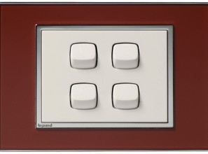 Decorative switches