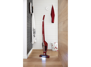 Electrolux 2-in-1 vacuum cleaner
