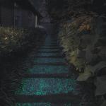 94095_Berger-Night-Bright-pathway