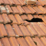 95079_Broken-roof-tile