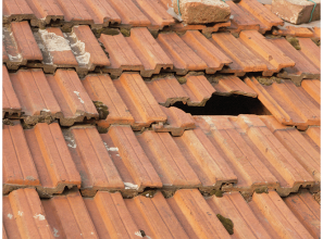 7-point plan to check for roof-maintenance