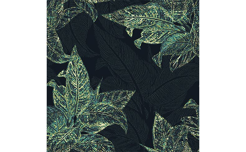 99045_Brintons_Carpets_inspiration_tropical_1-X5840IN