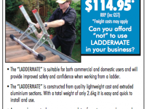 Ladder safety device