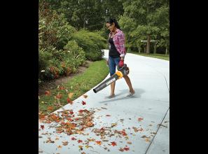 Cordless 20-Volt leaf blower
