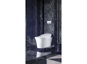 Self-cleaning, wall-hung toilet with advanced bidet functions