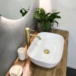 20181110A Brass Tapware + Timber Top