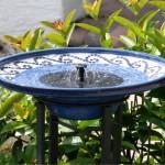 20190111B Birdbath