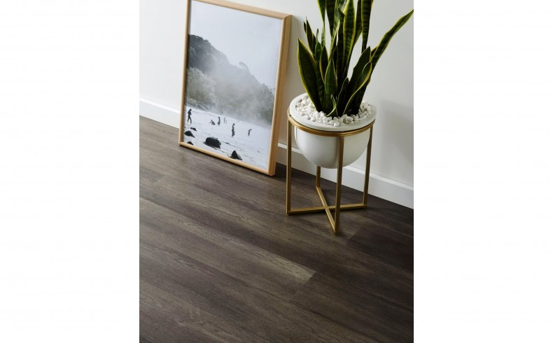 20190225D CARPET COURT Shadow Oak