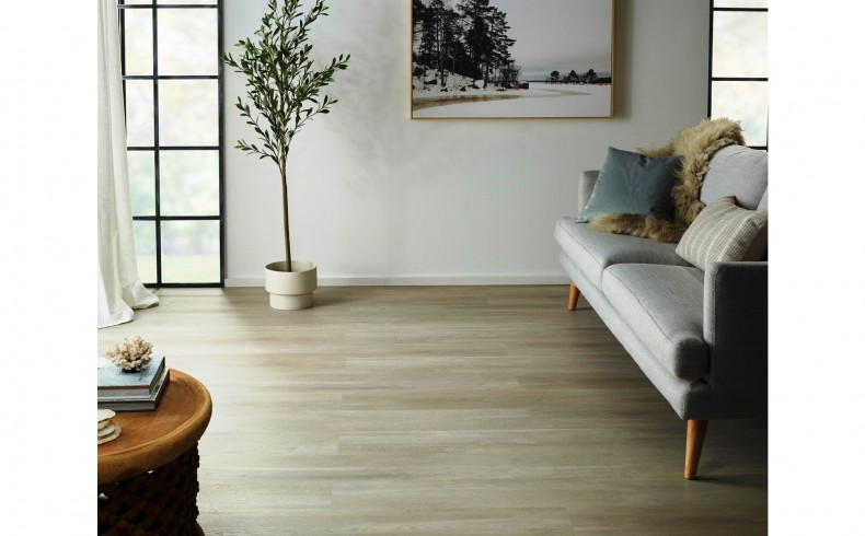 20190225H CARPET COURT White Oak