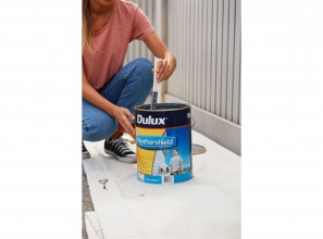 Repainting the front fence with Dulux Paints