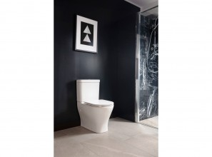 Back-to-wall toilet suite ideal for compact spaces